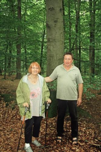 Bürgermeister von Buchholz / Dithmarschen, Uwe Bohlmann, zeigt Familie Enneper den Buchen-Hochwald